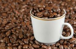 Kaffebönor i ett exponeringsglas Arkivbilder