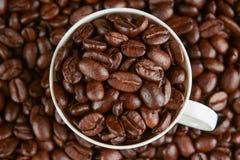 Kaffebönor i ett exponeringsglas Arkivfoto
