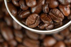 Kaffebönor i ett exponeringsglas Royaltyfri Bild