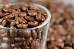 Kaffebönor i ett exponeringsglas Arkivbild