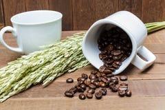 Kaffebönor i kaffe kuper Royaltyfri Foto
