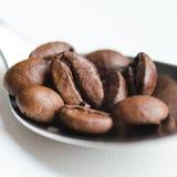 Kaffebönor i kaffesked på vit Arkivfoto