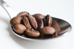 Kaffebönor i kaffesked på vit Arkivfoton