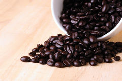 Kaffebönor i kopp Arkivfoton