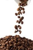 Kaffebönor i kopp Royaltyfri Bild