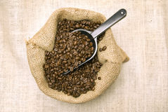 Kaffebönor i säckvävpåse med skopan Royaltyfri Foto