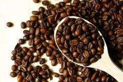 Kaffebönor i träsked Royaltyfria Foton