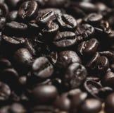 Kaffebönor, makro, mjuk fokus Royaltyfria Foton