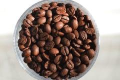 Kaffebönor - makro och specificerat skott Fotografering för Bildbyråer