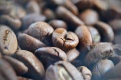 Kaffebönor - makro och specificerat skott Arkivbild