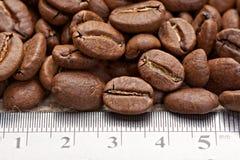 Kaffebönor med att mäta skalan Arkivfoto