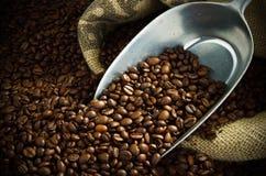 Kaffebönor med en metallskopa Arkivfoto