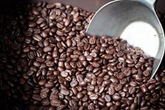 Kaffebönor med metallsleven Fotografering för Bildbyråer
