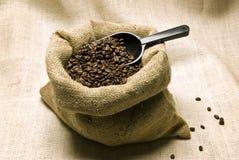 Kaffebönor med skopan Royaltyfri Fotografi
