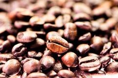 Kaffebönor, närbild av kaffebönor för bakgrund och textur Arkivfoton