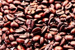 Kaffebönor, närbild av kaffebönor för bakgrund och textur Royaltyfria Foton