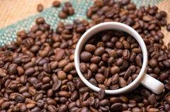 Kaffebönor och kopp för affärsidéer som annonserar royaltyfria bilder