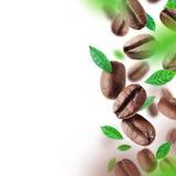 Kaffebönor och sidor som faller från luften fotografering för bildbyråer