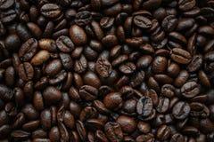 Kaffebönor på bakgrund arkivfoton