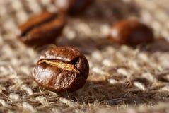 Kaffebönor på clothsackbakgrunden Arkivbild