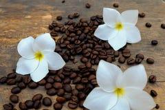 Kaffebönor på den wood tabellen Royaltyfri Foto