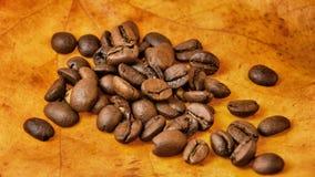 Kaffebönor på höstleaves arkivfoto