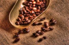 Kaffebönor på hessians Fotografering för Bildbyråer