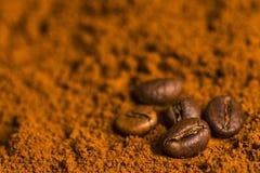 Kaffebönor på kaffepulver Arkivbilder