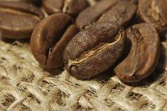 Kaffebönor på kanfas Arkivbilder