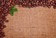 Kaffebönor på kanfas Royaltyfri Fotografi