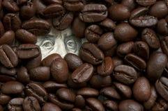 Kaffebönor på sedel royaltyfri fotografi