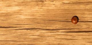Kaffebönor på tabellen Arkivfoton