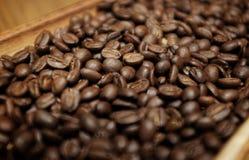 Kaffebönor på trät royaltyfria bilder