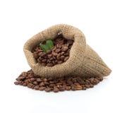 Kaffebönor på vit Arkivbilder