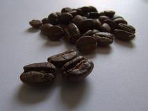 Kaffebönor på vit bakgrund och mjuk belysning Arkivfoton