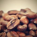 Kaffebönor på vit ren bakgrund Nytt grillat parfymerat kaffe för espresso Arabica 100% Royaltyfri Bild
