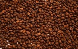 Kaffebönor sänker bakgrund royaltyfri bild