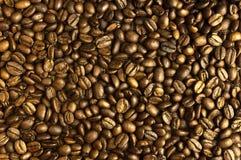 Kaffebönor, sammansättning av kaffebönor, backgrou för kaffebönor fotografering för bildbyråer
