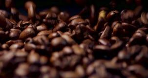 Kaffebönor som dråsar in mot kameran lager videofilmer