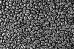 Kaffebönor som en bakgrund abstrakt svart white för designillustrationtextur Arkivbilder