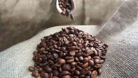 Kaffebönor som ner faller från träskopan stock video