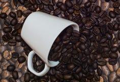 Kaffebönor, spridda från en vit kopp Royaltyfri Bild