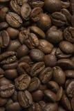 Kaffebönor stänger sig upp textur Royaltyfria Bilder