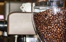 Kaffebönor väntar på att mala i ett kaffe maler arkivfoto