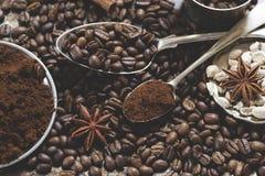 Kaffeb?nor och kryddor arkivbilder