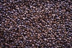 Kaffebakgrund Royaltyfria Bilder