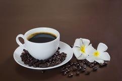 kaffeblomma Arkivbild