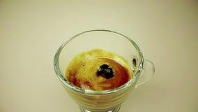 Kaffedroppe som faller i ultrarapid inom av den trasparent koppen av italienskt kaffe för espresso med skum på guld- varm ljus ba stock video
