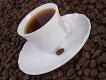 Kaffee 2 Lizenzfreies Stockfoto