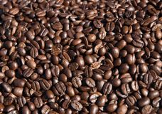 Kaffee Stockfoto